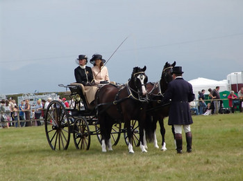 anglesey show.jpg
